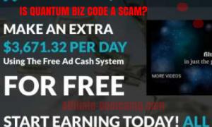 quantum biz code scam review