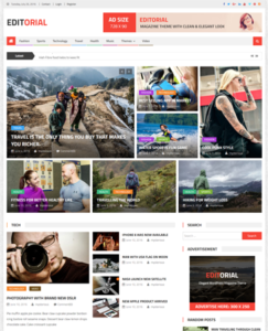 WordPress theme review
