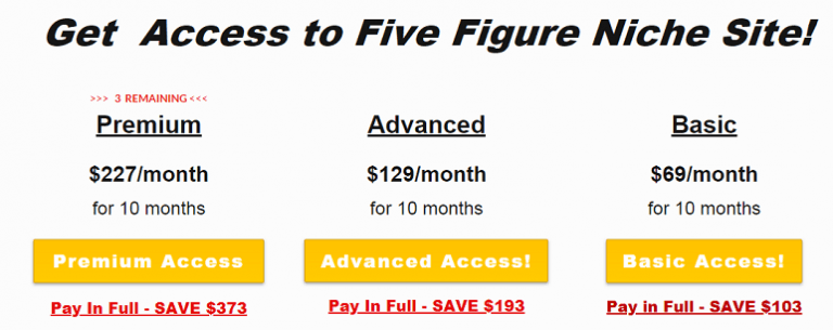 cost of Five figure niche site
